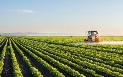 Entre tradition et hyper innovation, l'agriculture 2.0 est en marche !