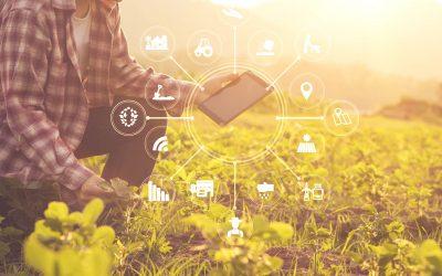 Agroalimentaire : le plan de relance est un tremplin pour les fermes connectées et l'usine digitale de demain
