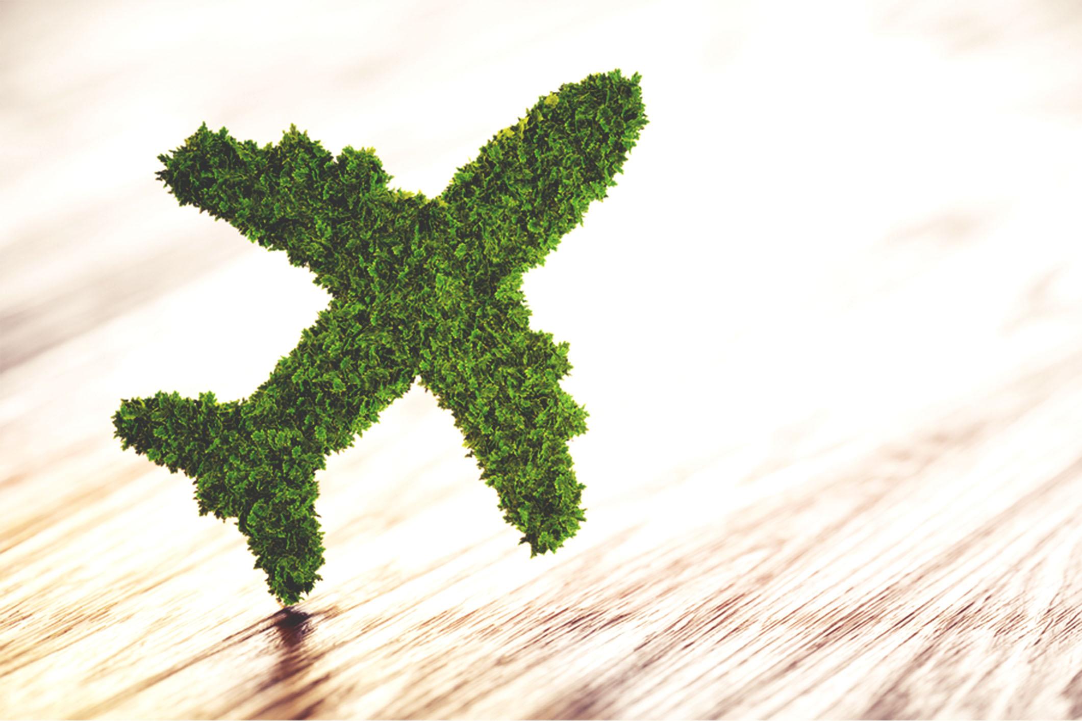 L'engagement environnemental aéroportuaire